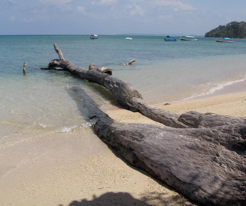 Andamans Dive Centers