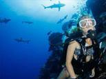 Venket Reef