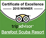 Trip Advisor Award Certificate of Excellence